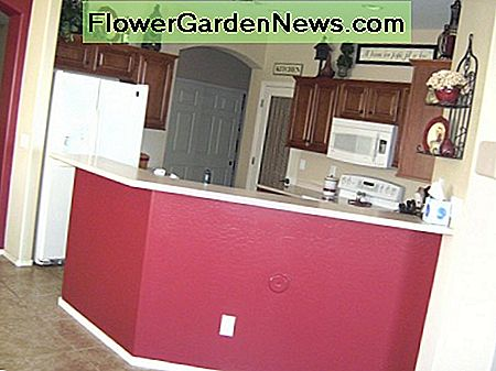 Painting under the high countertop adds color to the kitchen in a simple way.