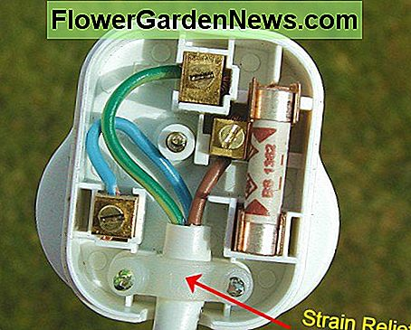 Full wired plug - Make sure all the wires are neatly packed away so that they don't get caught by the cover or the cover fixing screw
