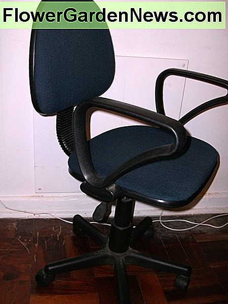 A typical typist's chair.