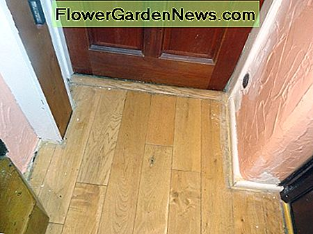 Overview of the old skirting boards on both sides of the downstairs landing by the living room door
