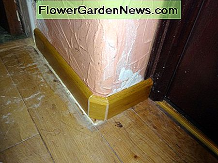 The corner of the skirting softened with an extra cut out, to better follow the curve of the wall