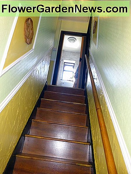 Stairs re-varnished after all the decorating is complete