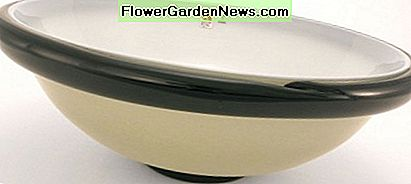 Angelo Barovier's Art Deco Bowl, Circa 1980, Est. Value $4, 000