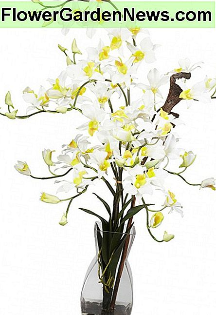 At QualitySilkPlants.com we carry a full line of silk flower arrangements that are set in artificial water to give them the fresh cut look. One of the largest selections of silk flower arrangements set in acrylic water is found here.
