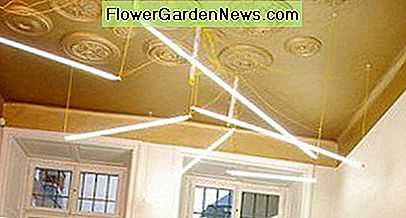 This ceiling features gold paint and extends the color down onto the wall to visually increase the ceiling height.