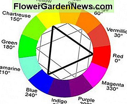 The color wheel represents warm and cool colors.