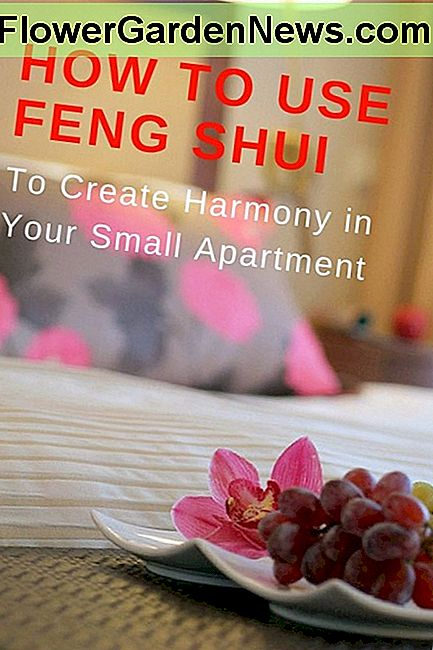 How to Use Feng Shui for Home Decor