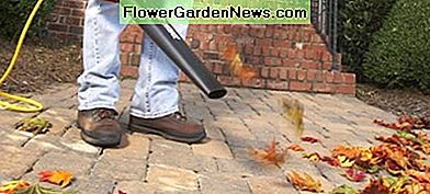 Some people think leaf blowers are more of a help than they are a hindrance. The article from which this photo was taken weighs in.