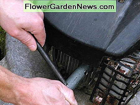 Removing the plug. Keep one hand on the plug wrench to stop it slipping off and damaging the spark plug.