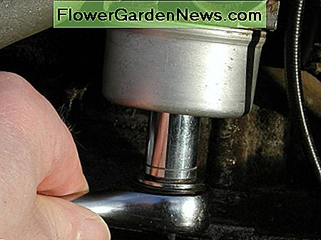 Remove bowl nut with socket wrench.