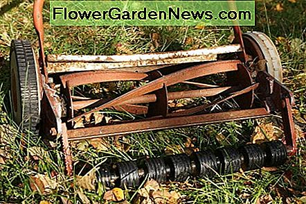 Reel/Cylinder mower