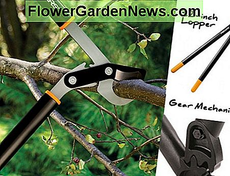 Lopper from Fiskars showing gear mechanism