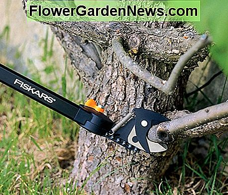 Pruners with an adjustable head angle are ideal for low level work.