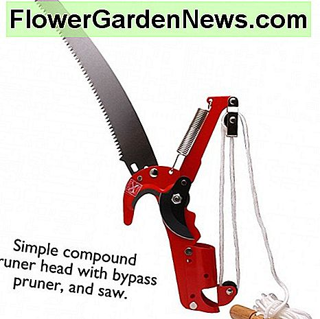 Typical compound pruner