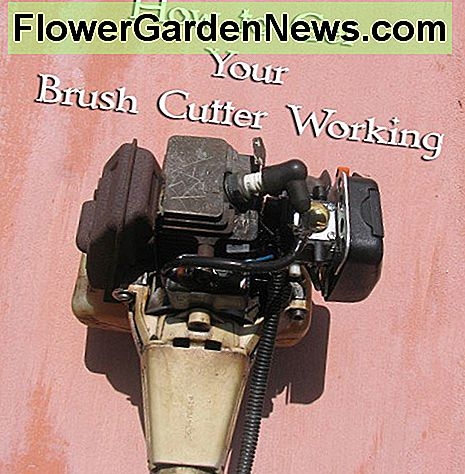 Stihl Brush Cutter Motor