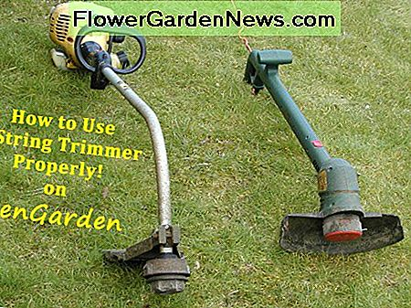 Gas and electric corded trimmers