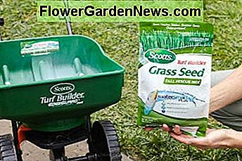 Many kinds of grass seed are on the market. Consult your local garden store to determine the best seed for your lawn.