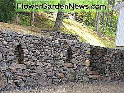 This wall in West-Bolton, near Brome Lake, QC, was built using field stone from the customer's and neighbouring property. Six feet in height and well over a hundred feet long. I was pleased that the customers allowed me to insert some arches.