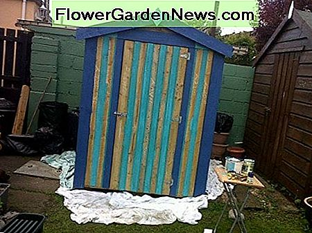 Painting a Garden Shed