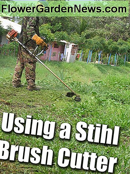 Stihl Børste Cutter Review