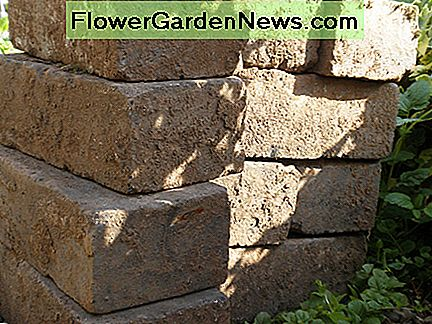 Get bricks from a building demolition site. They're great for edging and paving!