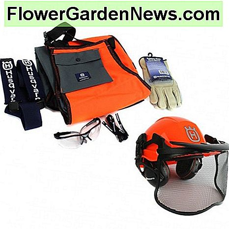 Helmet, wrap chap with suspenders, protective gloves and glasses.