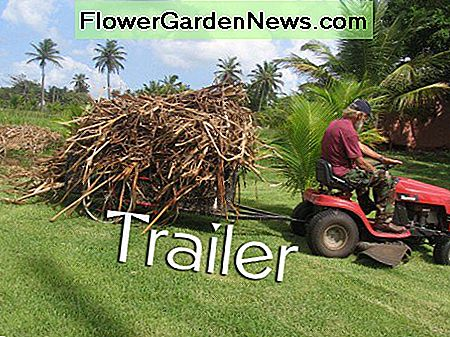 Ride on mower with trailer