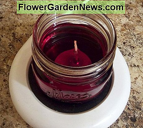 Scented candle melted on coffee warmer