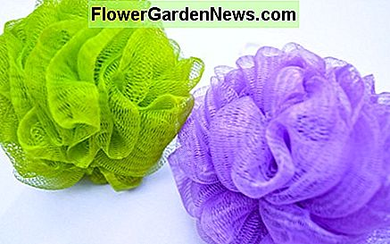 Loofahs can house bacteria so change them often.