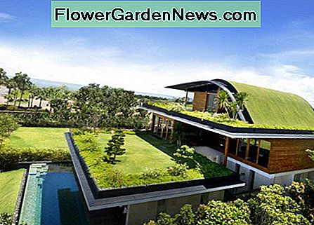 Milieuvriendelijke huizen: Top Eco Homes in the World