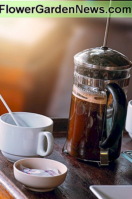 Make a simple coffee bar with a french press, some gourmet coffee, sugar, whitener and an electric kettle.