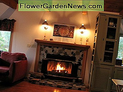Wood-burning and gas powered fireplaces are a common source of carbon monoxide.