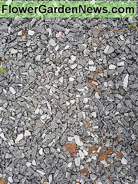 Gravel on hard soil