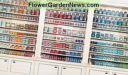 Top 10 Yankee Candle Scents