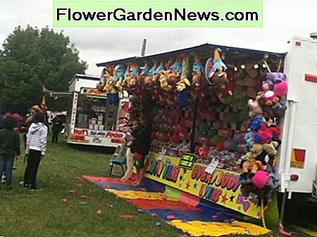 Many small towns have an annual show with novelties for children. Visit your nearest show and talk to the locals.