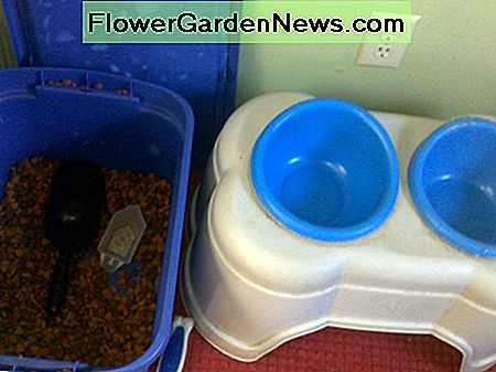 DO keep dog food in a sealed container.