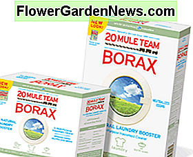 Borax works to get rid of roaches in your house.