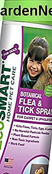 EcoSMART organisk tæppe og polstring Flea and Tick Killer, Best Pet Safe Insecticide, 15 oz Aerosol Spray Can