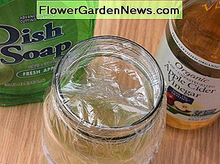 What you'll need to make a vinegar fly trap.