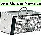 WallEc (TM) Havahart 0745 Medium Live spel Animal Trap 1 Door Chipmunk & Squirrel Trap Cage