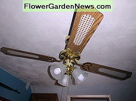 The new ceiling fan light with three 9 watt LED bulbs, giving the equivalent light output as 180 watts from the old tungsten lightbulbs (3 x 60 watt bulbs).