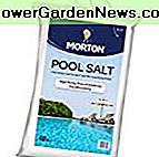 MORTON SALT 3460 Pool Salz, 40 lb