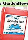 Camco ISwimming Pool Anti-Frost - 1 qt